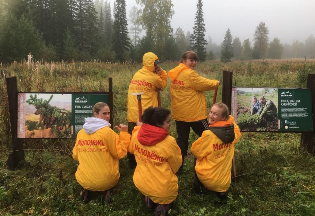 За пять часов волонтеры ЗЭМЗ пропололи около гектара будущего леса